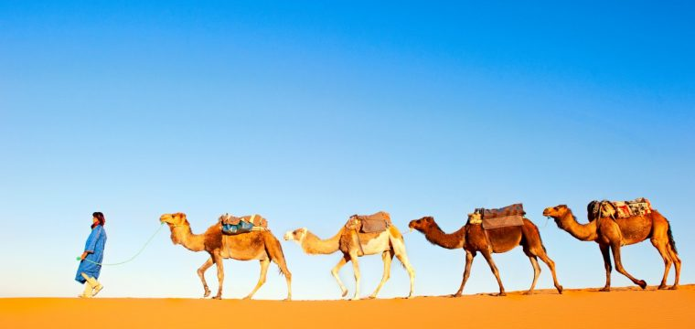 8 Dagen 4 Marrakech En Agadir Met Lidl Reizen Januari 2018 599