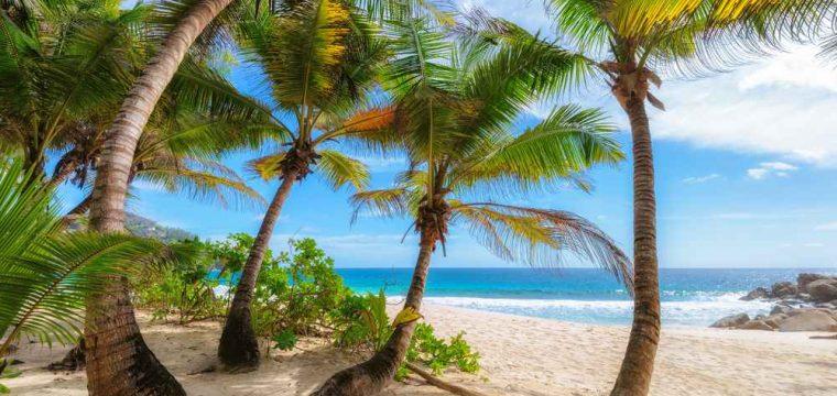Paradijselijke Seychellen korting | 10 dagen januari 2018 €1023,- per persoon